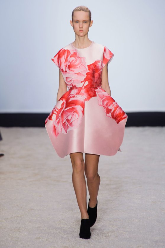 Giambattista-Valli-Fall-2014-5